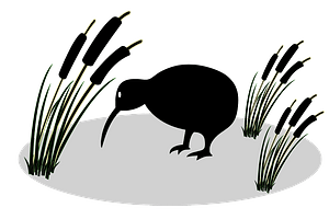Kiwi and reed clipart