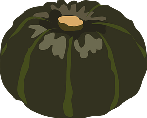 Japanese pumpkin vegetable clipart