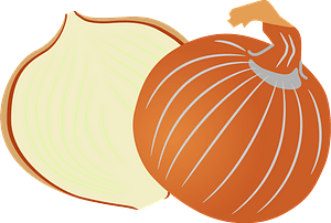 Onion vegetable food clipart