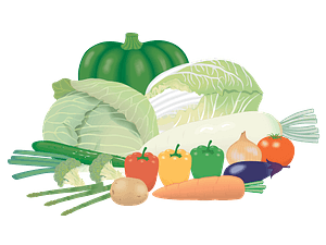 Vegetables from the garden clipart