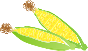 Ears of Corn clipart