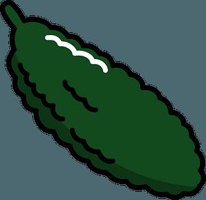 Bitter melon clipart
