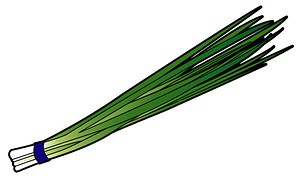 Bunching onion vegetable clipart