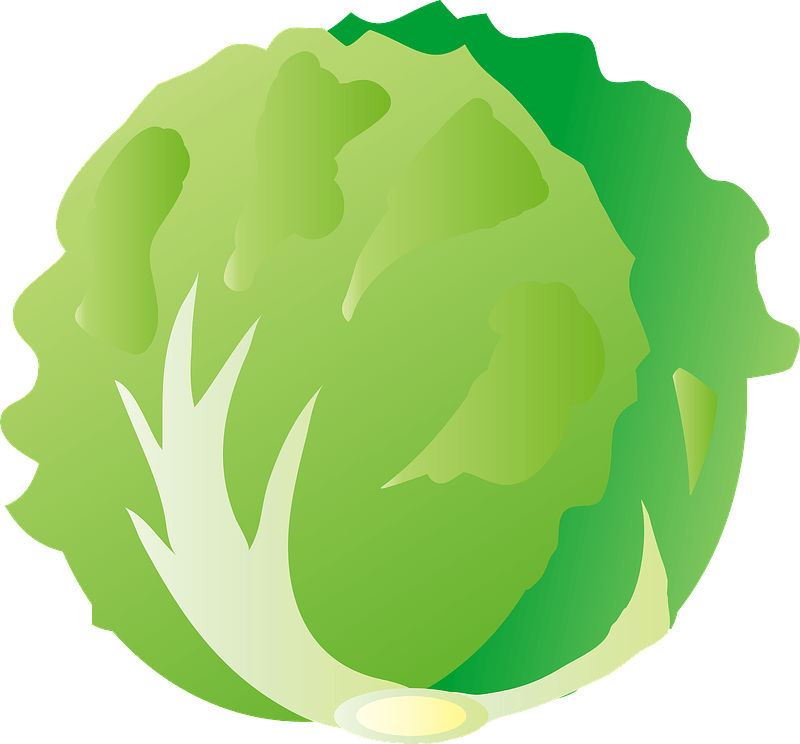 Lettuce Clipart Free Download Transparent Png Creazilla | view 73 vegetable salad illustration, images and graphics from +50,000 possibilities. lettuce clipart free download