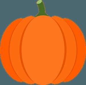 Pumpkin squash clipart