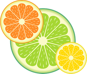 Citrus fruit slices clipart
