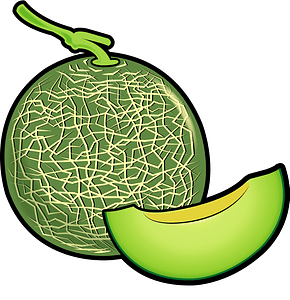 Honeydew Melon Whole and Wedge clipart