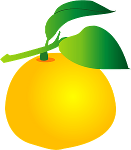 Yuzu fruits clipart