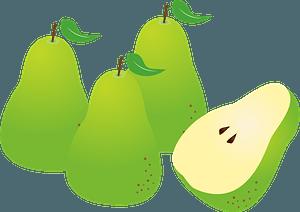 European pears clipart