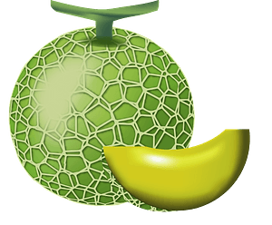 Honeydew Melon - Whole and Wedge clipart
