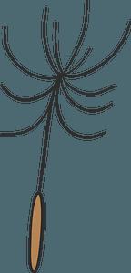 Dandelion parachute clipart