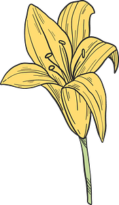 Yellow lilies clipart