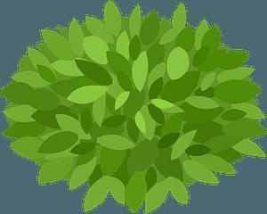 Bush кліпарт