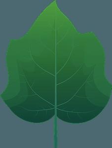 Foxglove tree spring leaf clipart