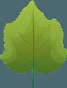 Foxglove tree summer leaf clipart