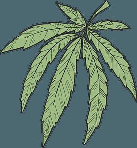 Marijuana clipart
