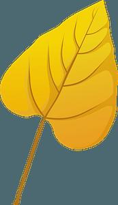 Southern catalpa late autumn leaf clipart