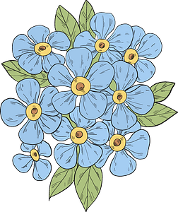 Forget-me-not clipart