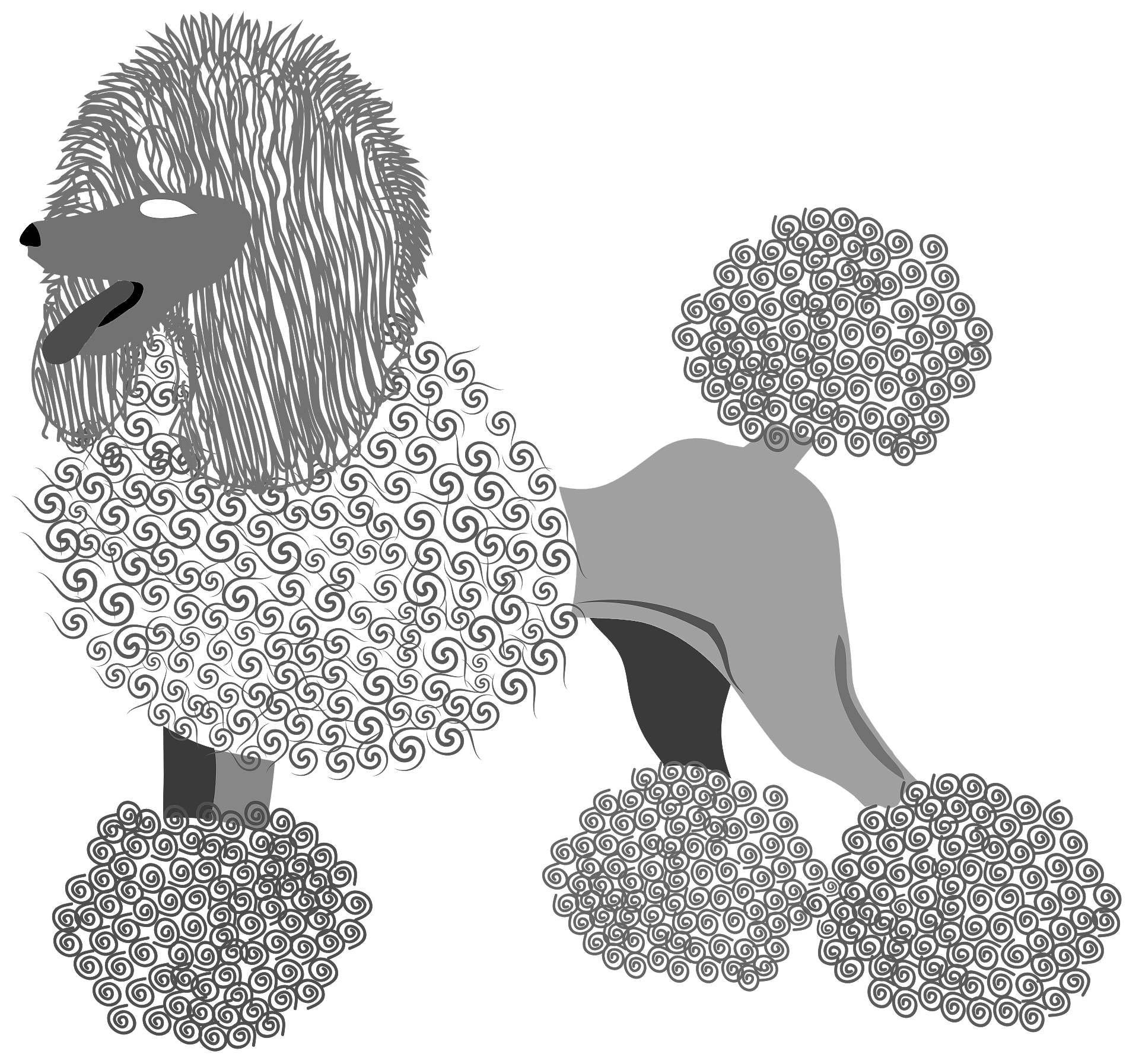 Sitting On The Dog (toy Poodle) Royalty Free Cliparts, Vectors, And Stock  Illustration. Image 102462527.