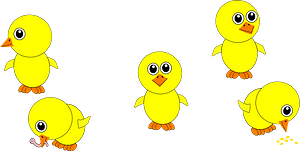 Funny chicks eating and in multiple positions cartoon clipart