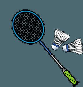 Badminton racket and shuttlecocks clipart