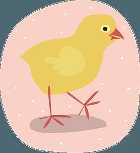 Chickのクリップアート