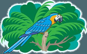 Parrotのクリップアート