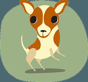 Chihuahua кліпарт