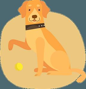 Labrador кліпарт