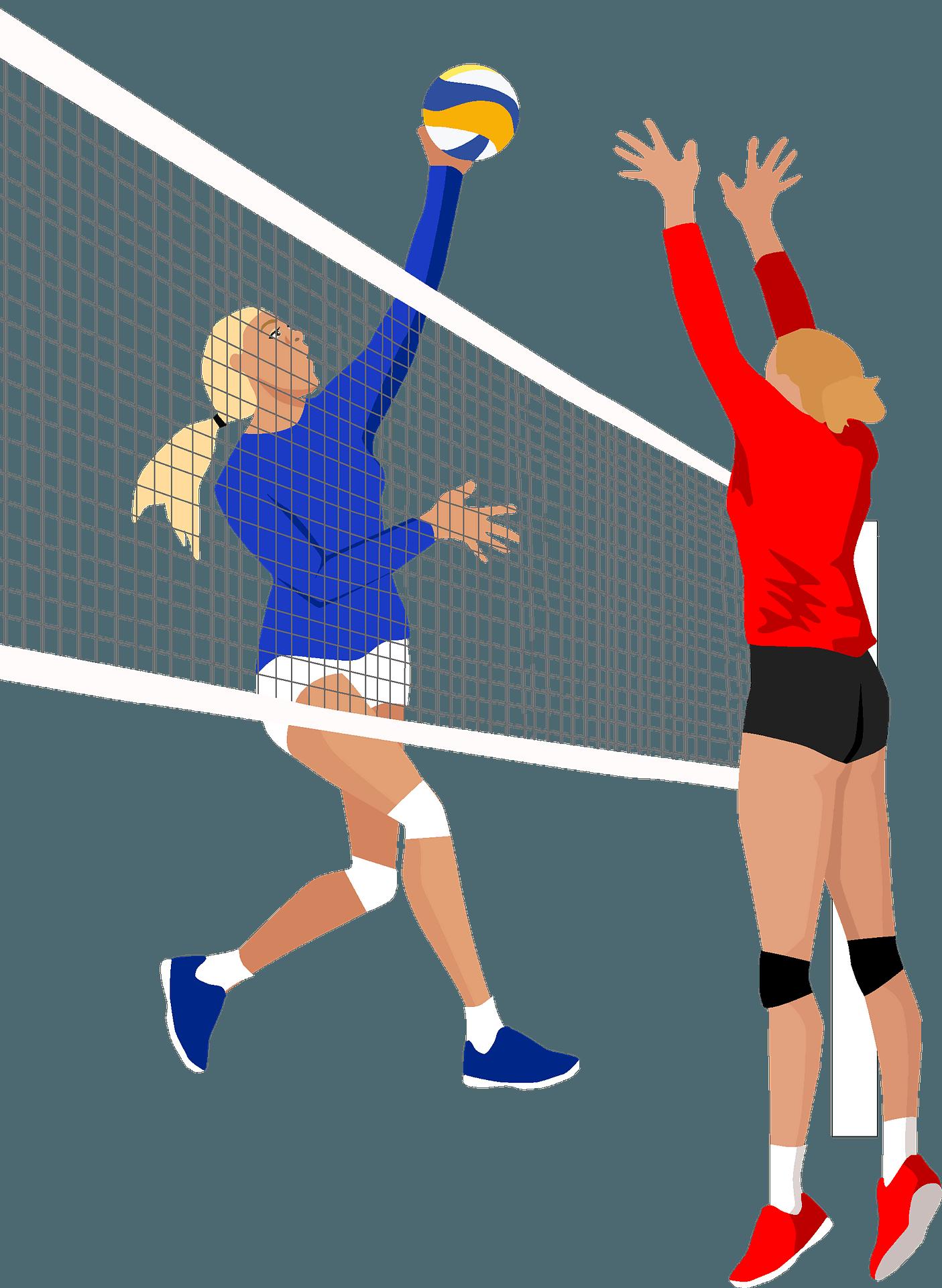 Clip Art Stock Beach Sport Clip Art - Clip Art Transparent Background  Volleyball, HD Png Download - kindpng