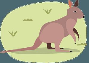 Kangaroo 클립 아트