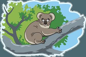 Koala 클립 아트