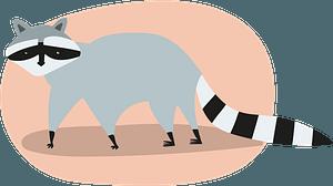 Raccoon 클립 아트