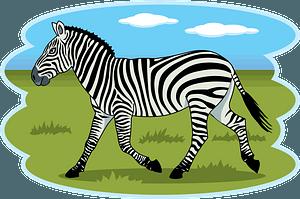 Zebra 클립 아트