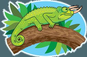 Trioceros Chameleon 클립 아트