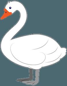 Swanのクリップアート