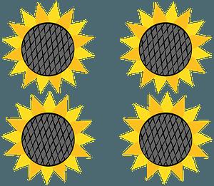 Sunflowerのクリップアート