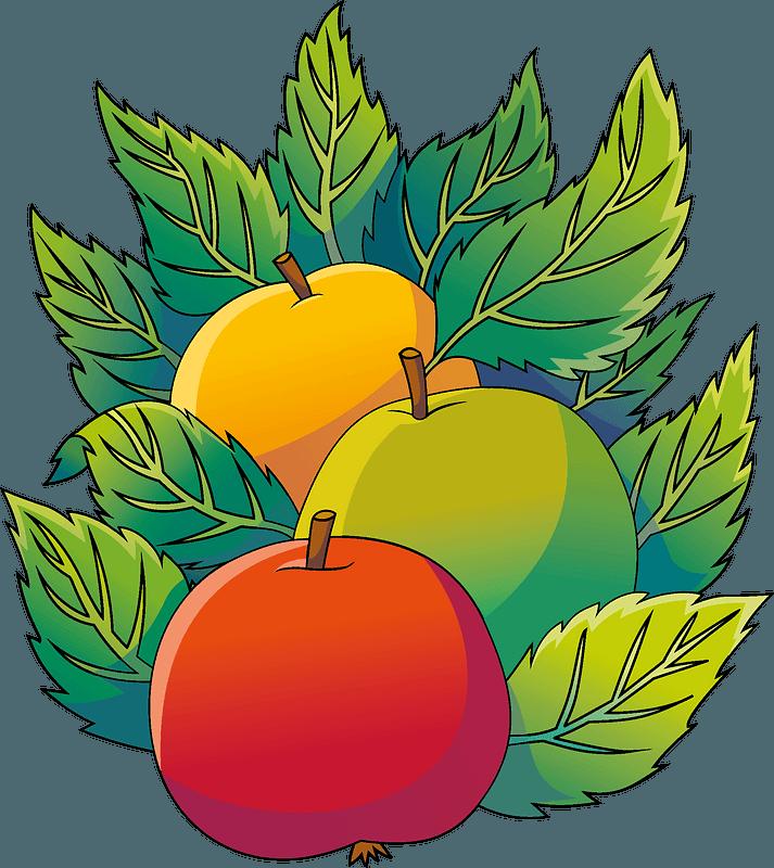 Apples 剪贴画