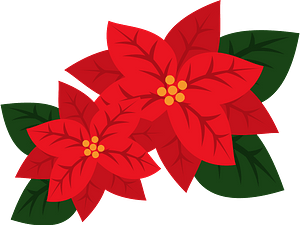 Poinsettia flower clipart