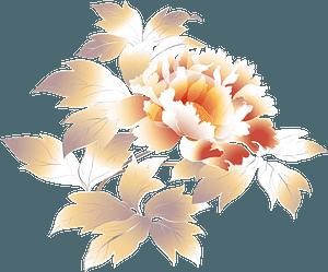 Peony flower clipart