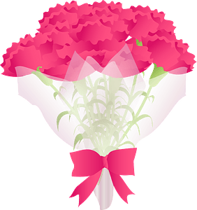 Carnation bouquet for mother's day clipart