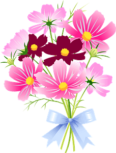 Cosmos flower bouquet clipart