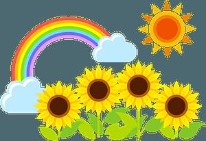 Sunflower Row under the Sun and a Rainbow clipart