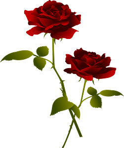 Red rose flower clipart
