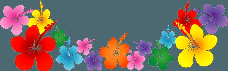 flower border flower background floral line clipart - Green, Leaf, Petal,  transparent clip art