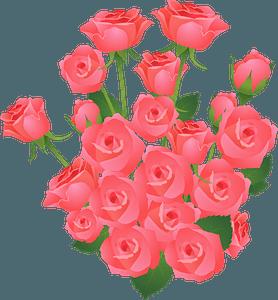 Roses bouquet clipart