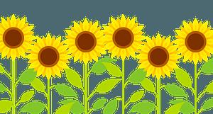 Sunflower Row clipart
