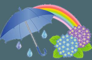 Umbrella, rainbow, hydrangea clipart