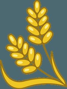 Wheat кліпарт