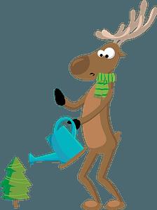 Deer watering a pine clipart